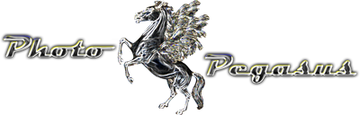 Photo Pegasus Logo